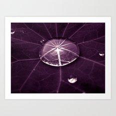 purple water drop XVI Art Print
