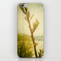 Primavera iPhone & iPod Skin