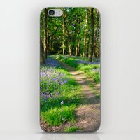 Bluebell Woods iPhone & iPod Skin