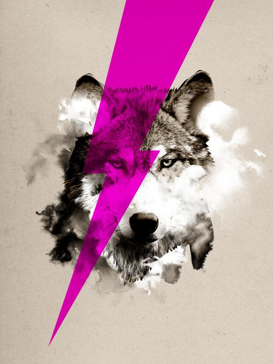 Wolf Rocks Art Print