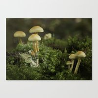 Canvas Print featuring Pixie and 'shrooms by Fran Walding