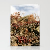 Soul Nature Stationery Cards