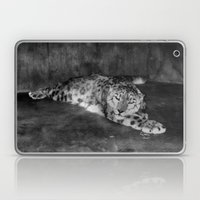 Lazy Leopard Laptop & iPad Skin