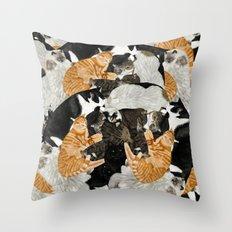 Cat Print Throw Pillow