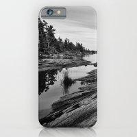 The Massasauga Park iPhone 6 Slim Case