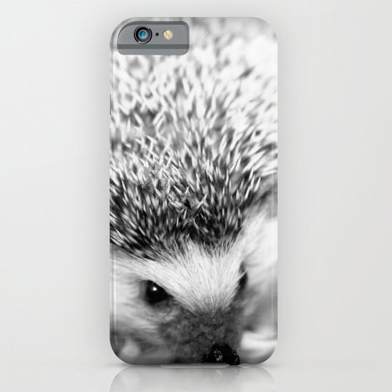 hedgehog iPhone & iPod Case