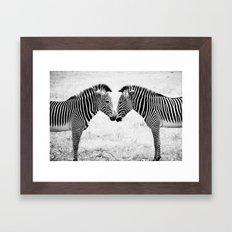 Two Zebras Framed Art Print