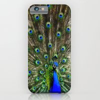 iPhone & iPod Case featuring Peacock Flaunting  by Elaine C Manley