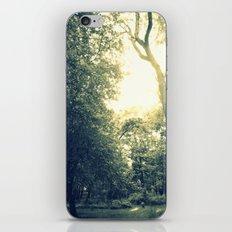 Light Coated iPhone & iPod Skin