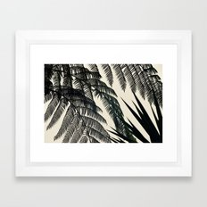 Palms at Dusk Framed Art Print