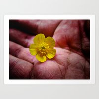 Pickin' Wild Flowers Art Print