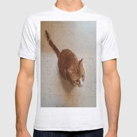 MORRIS ON THE WALL Mens Fitted Tee Ash Grey SMALL