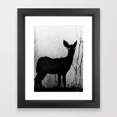 Whitetail - Fawn Framed Art Print