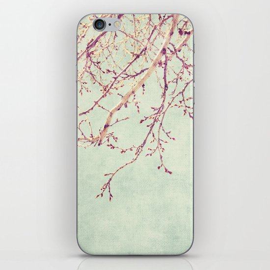 Chinese Spring iPhone & iPod Skin