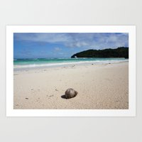 The Coconut Nut Is A Gia… Art Print