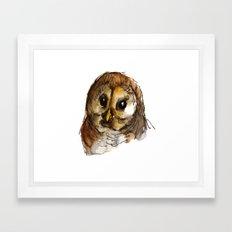 Big-eyed owl Framed Art Print