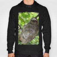 Sloths in Nature Hoody
