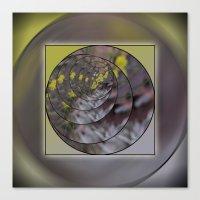 Wattle in the Round Canvas Print