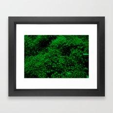 GreenGrass Framed Art Print