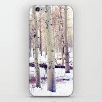Aspen Trees in Winter iPhone & iPod Skin