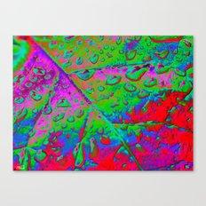 Colors ~ Filters & Light Canvas Print