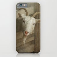 iPhone & iPod Case featuring The curious goat by Pauline Fowler ( Polly470 )