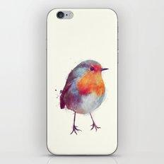 Winter Robin iPhone & iPod Skin