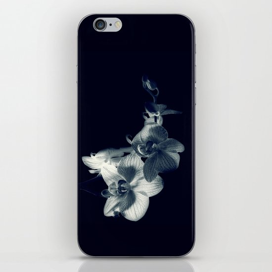 Blue Orchid  iPhone & iPod Skin