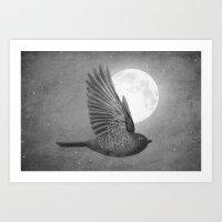 Night Bird Art Print