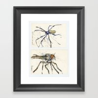 Insect study Framed Art Print