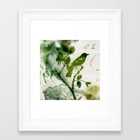 Birds (square 1) Framed Art Print