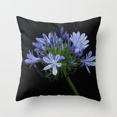 Agapanthas Throw Pillow