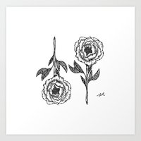 Peony 2 Art Print