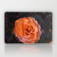 Holland Park Rose Laptop & iPad Skin