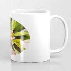 Birth Mug