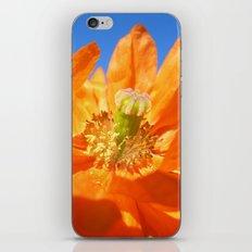 poppy bloom  I iPhone & iPod Skin