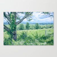Never Ending Field Canvas Print