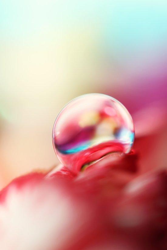 Dreamy Droplet Art Print