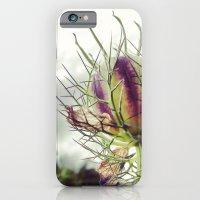 Love in a Mist Pod iPhone 6 Slim Case