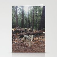 california Stationery Cards featuring Injured Coyote by Kevin Russ