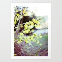 Spring Rebirth Art Print