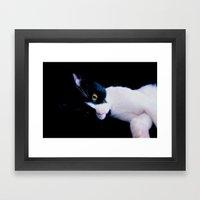 Black White Cat Framed Art Print
