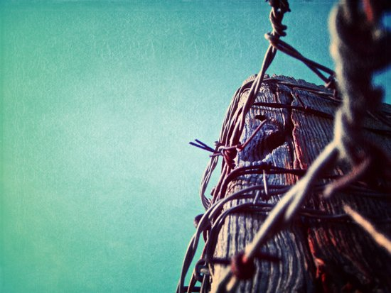 Barbed Wire Blue Art Print