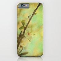 Springtime Blossom iPhone 6 Slim Case
