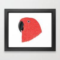 Eclectus [Female] Parrot Framed Art Print
