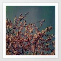 Cherry Blossoms, Polaroi… Art Print
