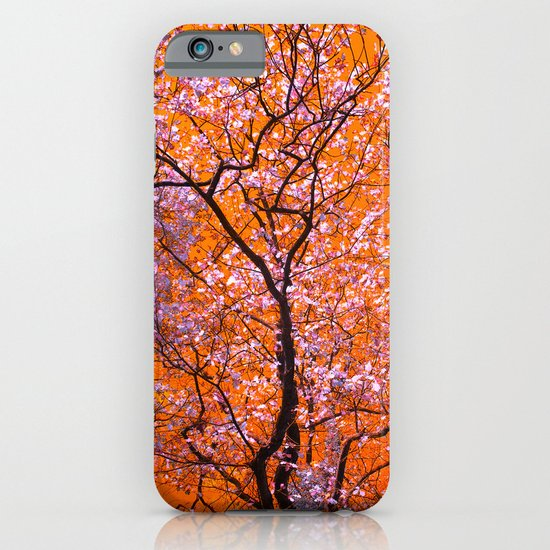 autumn tree IX iPhone & iPod Case