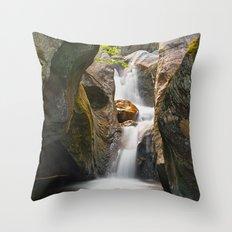 Texas Falls Throw Pillow