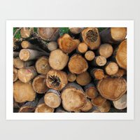 New Sawn Logs Art Print
