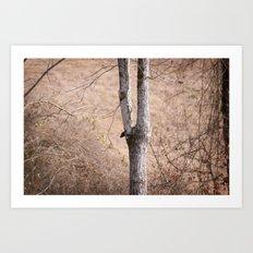January Trees Art Print